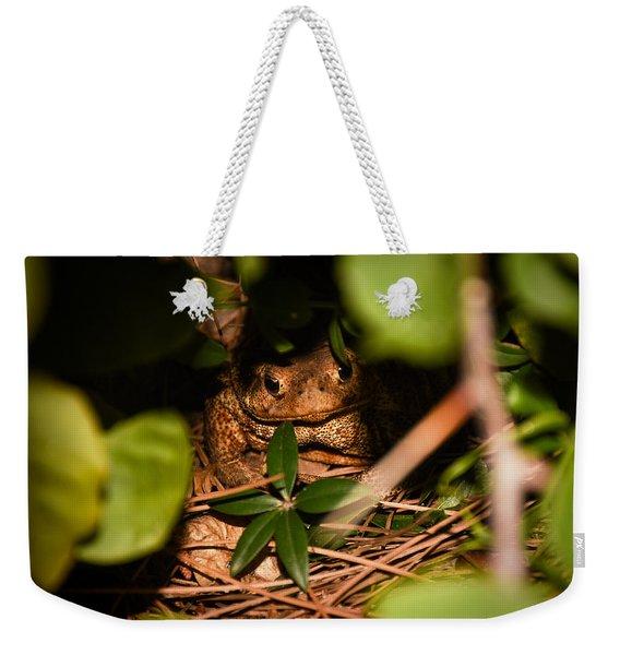 Mr Frog Weekender Tote Bag