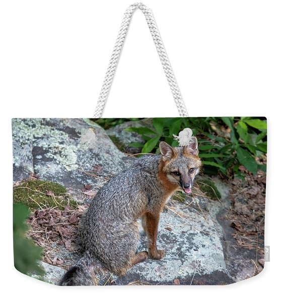 Ms Pin Weekender Tote Bag