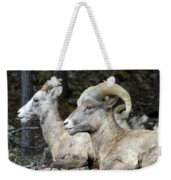 Mt Sheep  Weekender Tote Bag