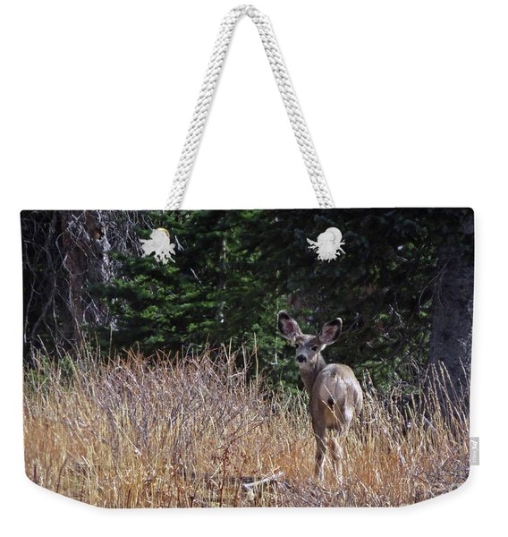 Mule Deer In Utah Weekender Tote Bag