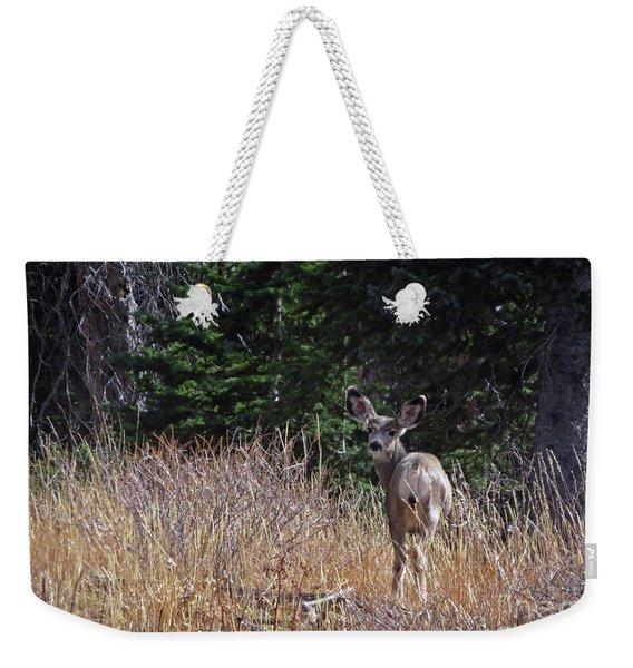 Mule Deer In Utah Weekender Tote Bag