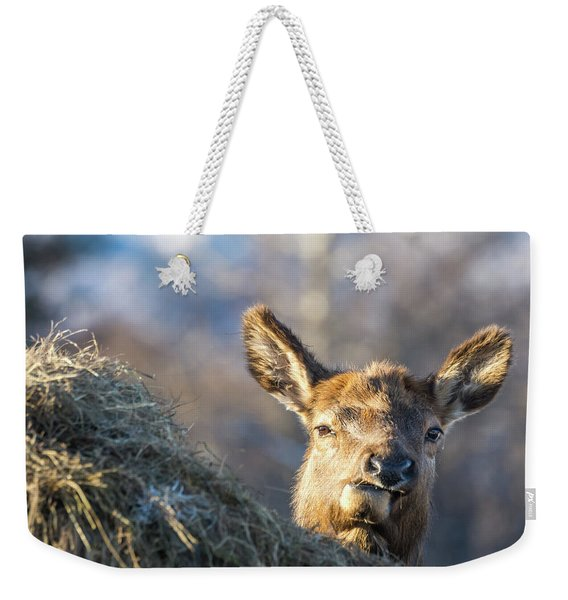 Munching Weekender Tote Bag