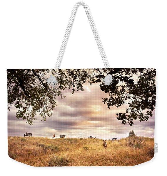 Munson Morning Weekender Tote Bag