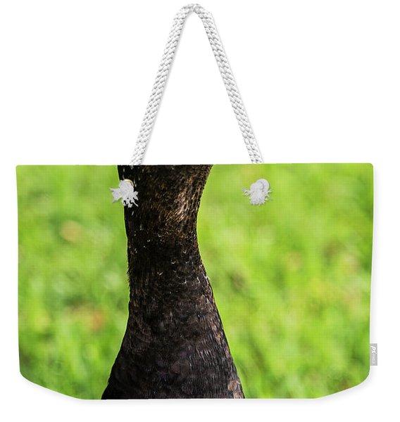 Muscovy Duck-0271 Weekender Tote Bag