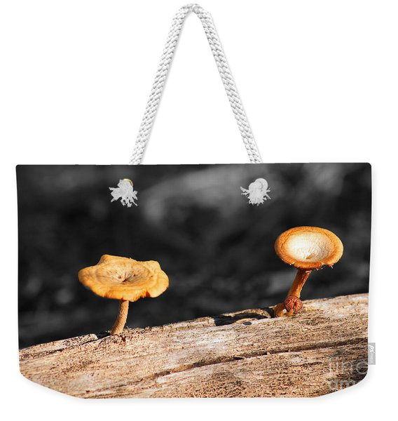 Mushrooms On A Branch Weekender Tote Bag