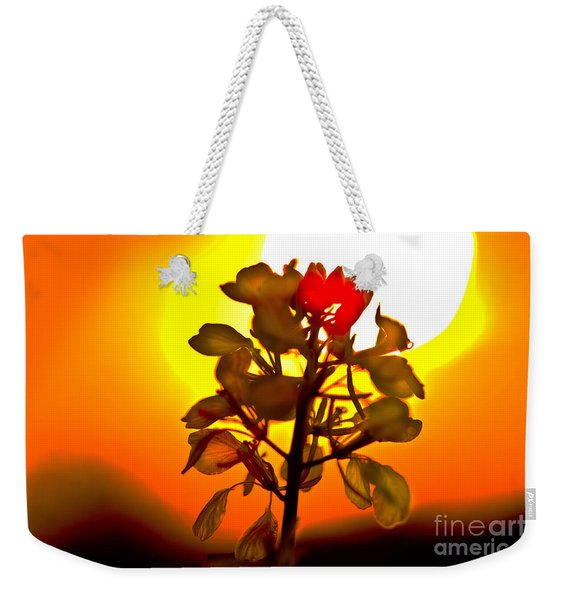 Mustard Sunset Weekender Tote Bag