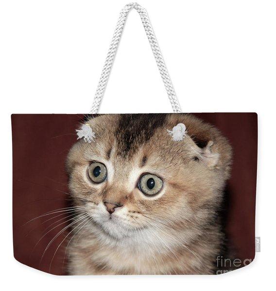 Timoshka Collection - 6 Weekender Tote Bag