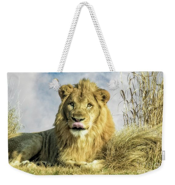 My You Look Tasty Weekender Tote Bag