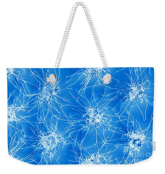 Nanowire Growth, Nanotechnology Weekender Tote Bag