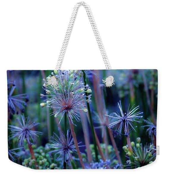 Natural Fireworks 4791 H_2 Weekender Tote Bag