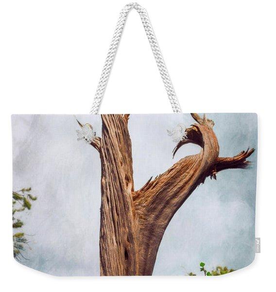 Nature Abstract Weekender Tote Bag