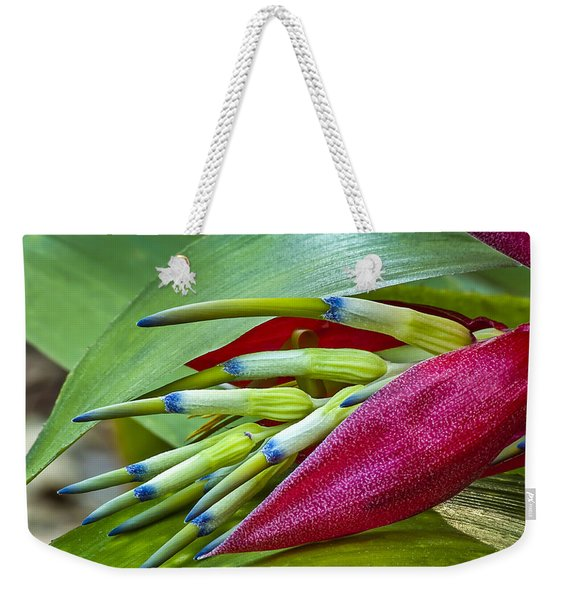 Weekender Tote Bag featuring the photograph Nature In Bloom by Carolyn Marshall