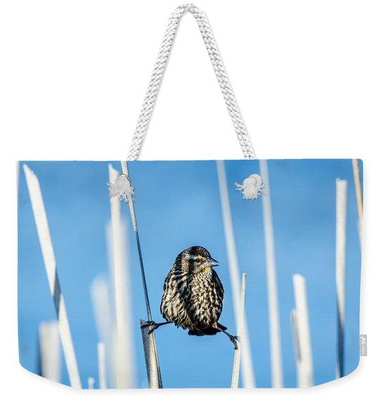 Nature's Circus Weekender Tote Bag
