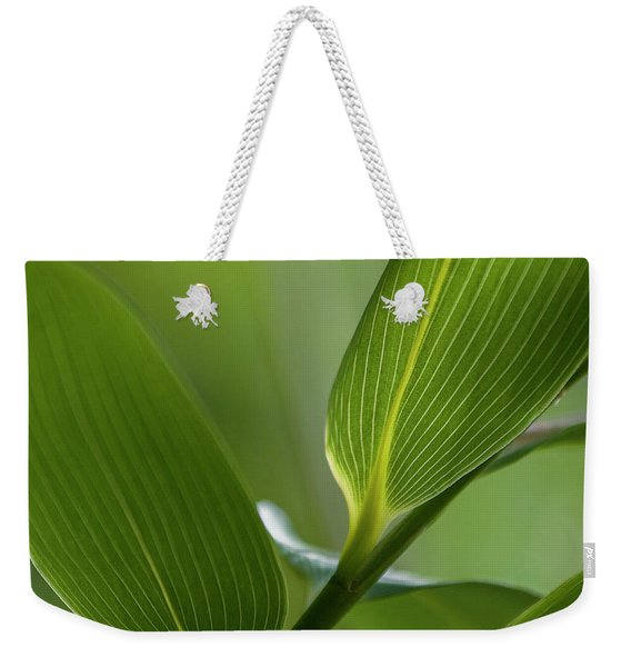 Natures Green Palette Four Weekender Tote Bag