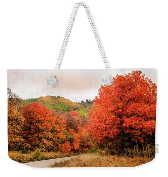 Nature's Palette Weekender Tote Bag