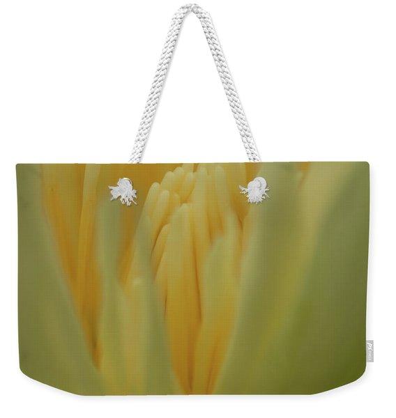 Natures Reflection Weekender Tote Bag