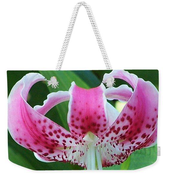 Nature's Windchime  Weekender Tote Bag