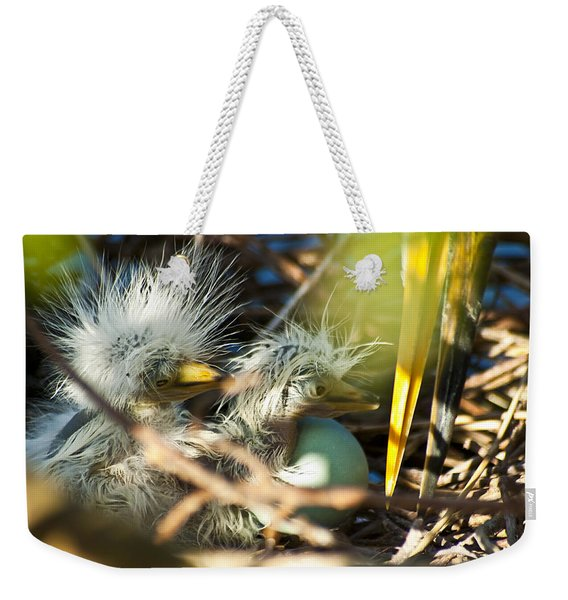 Weekender Tote Bag featuring the photograph New Arrivals by Carolyn Marshall