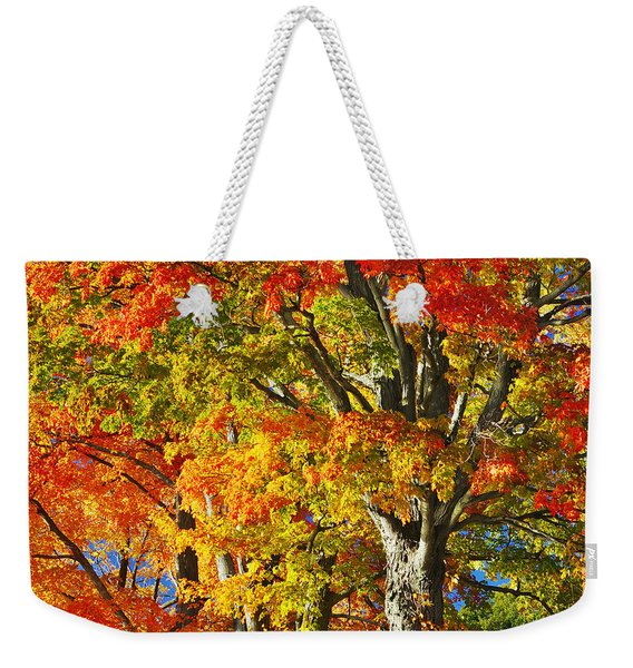 New England Sugar Maples Weekender Tote Bag