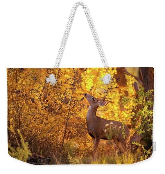 New Mexico Buck Browsing Weekender Tote Bag