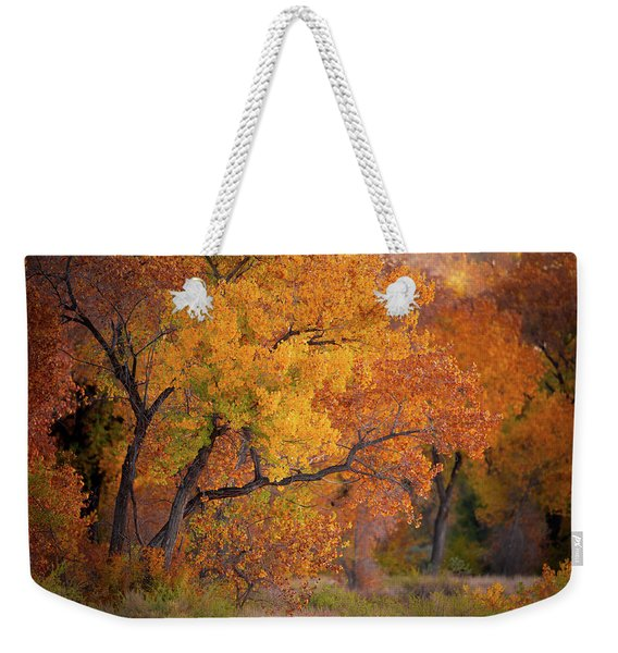 New Mexico Gold Weekender Tote Bag