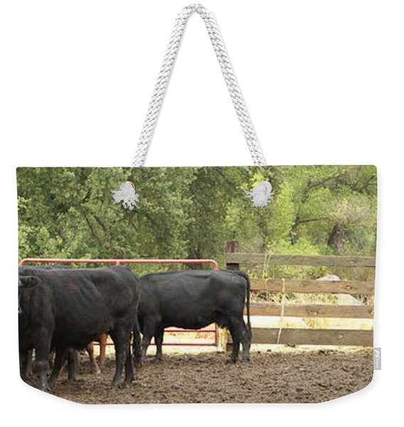 Nick Shipping Cattle Weekender Tote Bag