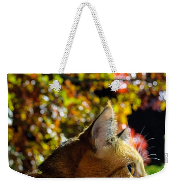 Night Stalker Weekender Tote Bag