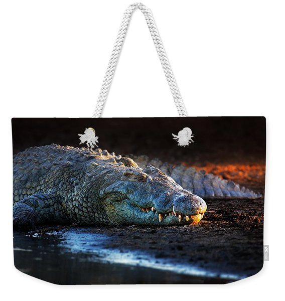 Nile Crocodile On Riverbank-1 Weekender Tote Bag