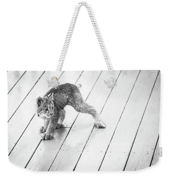 Weekender Tote Bag featuring the photograph Ninja Lynx Kitty Bw by Tim Newton