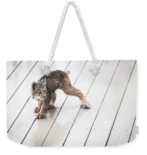 Weekender Tote Bag featuring the photograph Ninja Lynx Kitty by Tim Newton