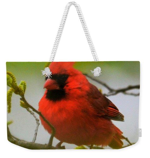 North Carolina Cardinal Weekender Tote Bag