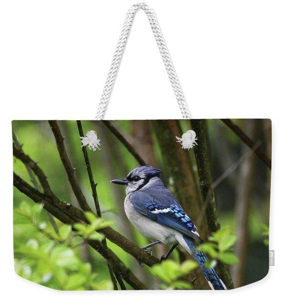 Northern Blue Jay Weekender Tote Bag