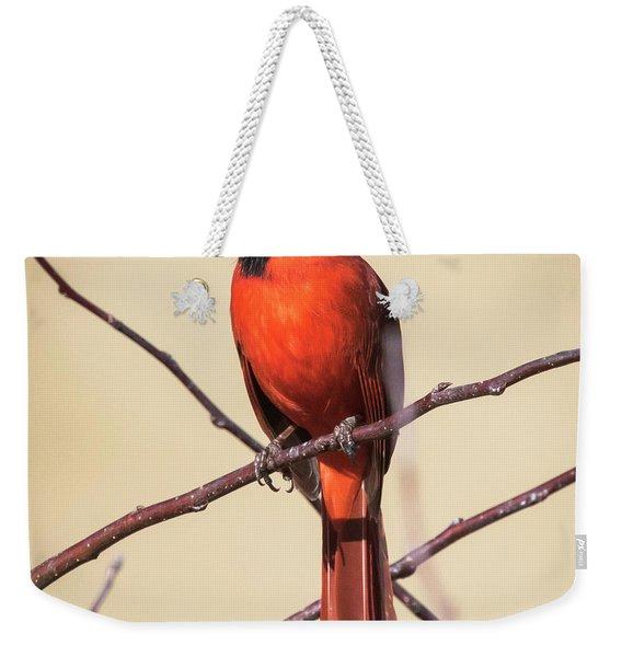 Northern Cardinal Profile Weekender Tote Bag
