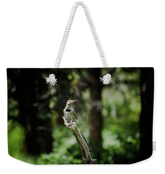 Weekender Tote Bag featuring the photograph Northern Flicker by Jason Coward
