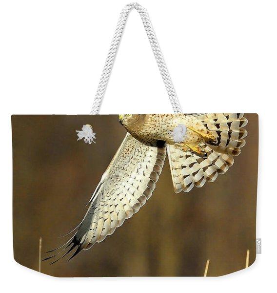 Northern Harrier Banking Weekender Tote Bag