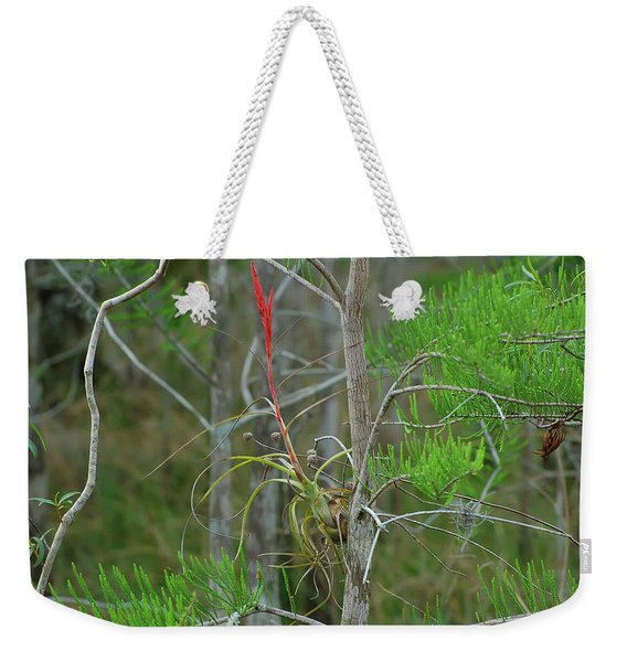 Northern Needleleaf Weekender Tote Bag