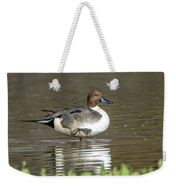 Northern Pintail Duck Weekender Tote Bag