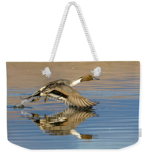 Northern Pintail With Reflection Weekender Tote Bag