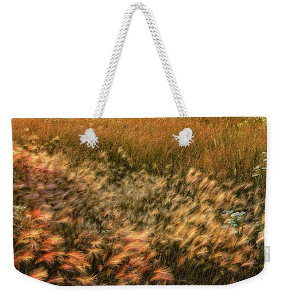 Weekender Tote Bag featuring the photograph Northern Summer by Doug Gibbons