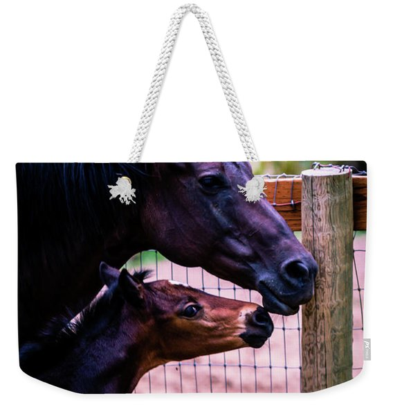 Nose To Nose Weekender Tote Bag