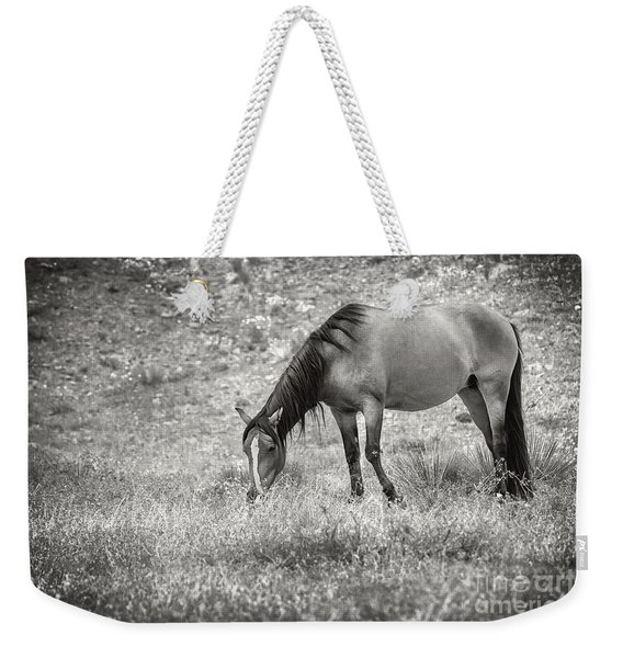 Not All Those Who Wander Are Lost Weekender Tote Bag