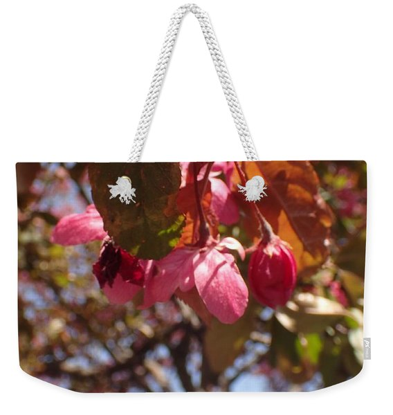 Not Far From The Tree Weekender Tote Bag