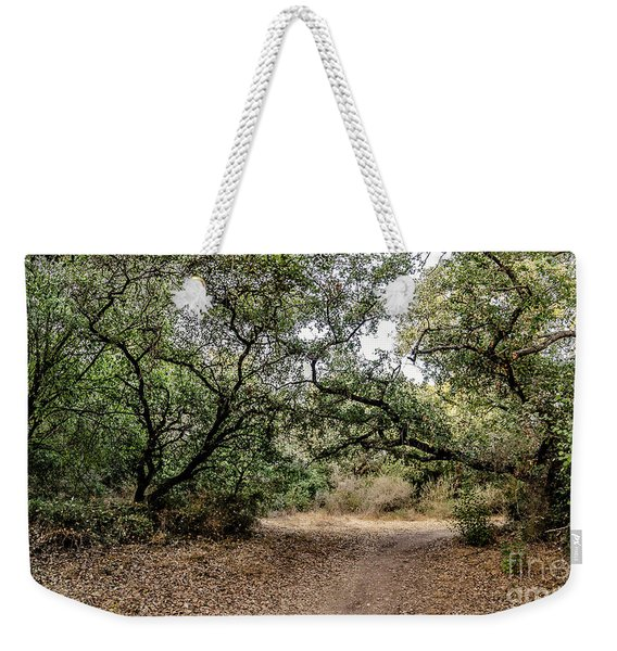 Weekender Tote Bag featuring the photograph Oak Forest Trail by Arik Baltinester