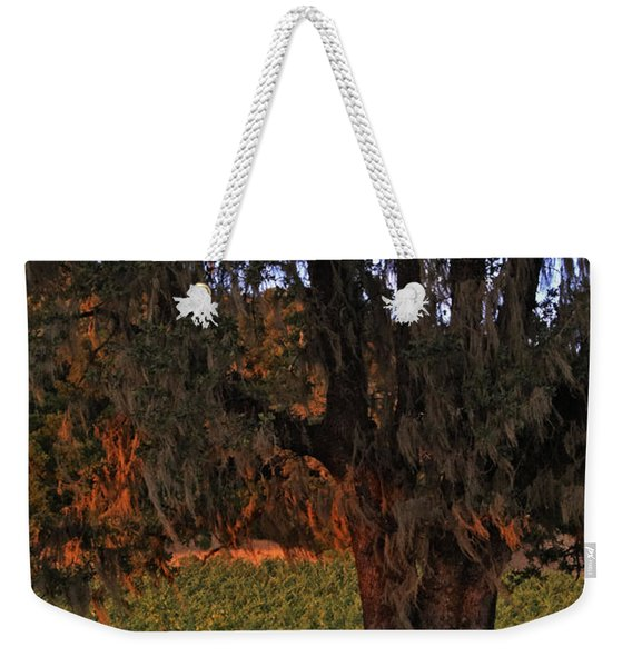 Oak Tree And Vineyards In Knight's Valley Weekender Tote Bag