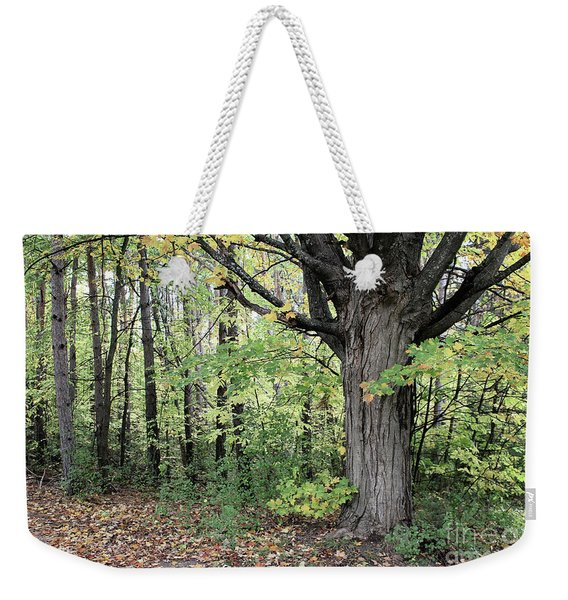 October Trees Weekender Tote Bag