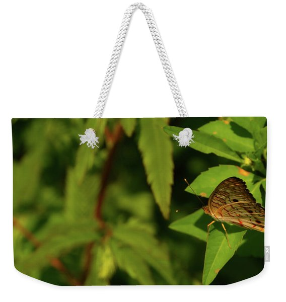 Offset Image Of A Brown Butterfly Weekender Tote Bag