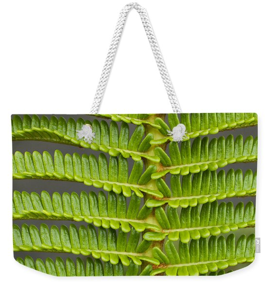 Weekender Tote Bag featuring the photograph Ama'u Fern Detail by Charmian Vistaunet