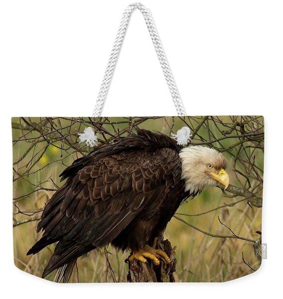 Old Eagle Weekender Tote Bag
