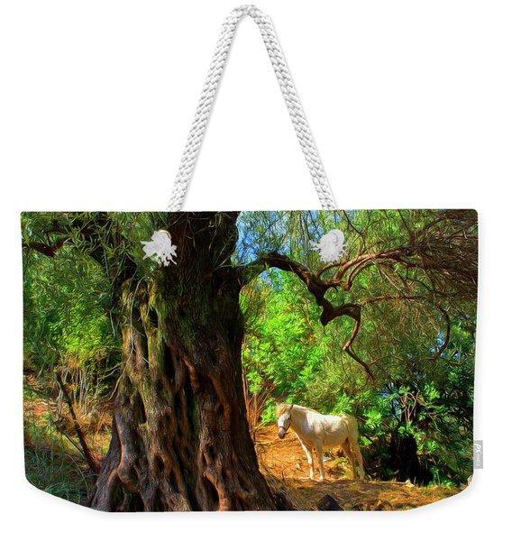 Old Olive Tree And Horse Weekender Tote Bag