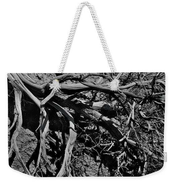 Weekender Tote Bag featuring the photograph Old Sagebrush by Ron Cline